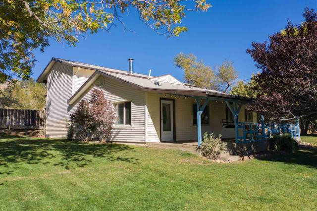 101 Todd Ct., Washoe Valley, NV 89704 (MLS #190007353) :: NVGemme Real Estate