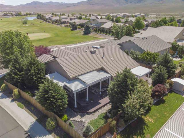 101 Turnberry Court, Dayton, NV 89403 (MLS #190007356) :: Vaulet Group Real Estate
