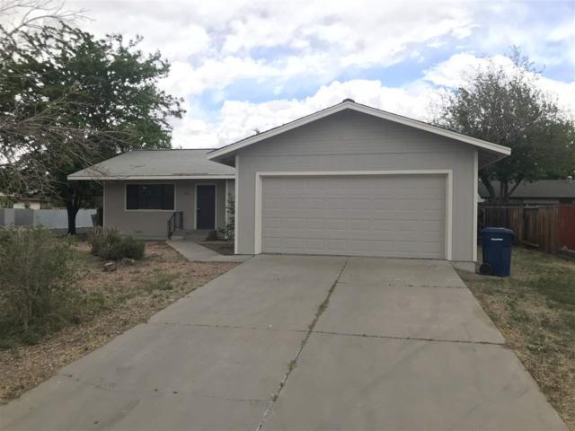 361 Shadow Lane, Fernley, NV 89408 (MLS #190007369) :: NVGemme Real Estate