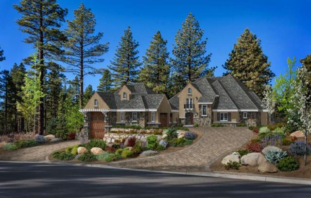 20585 Margaux Road, Reno, NV 89511 (MLS #190007405) :: Vaulet Group Real Estate