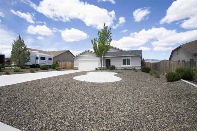 1146 Ferretto Pkwy, Dayton, NV 89403 (MLS #190007446) :: Harcourts NV1