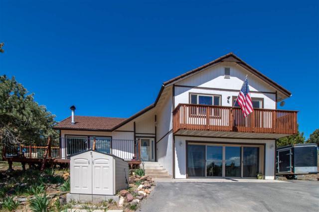2440 Adobe Spur Rd., Reno, NV 89521 (MLS #190007460) :: Vaulet Group Real Estate