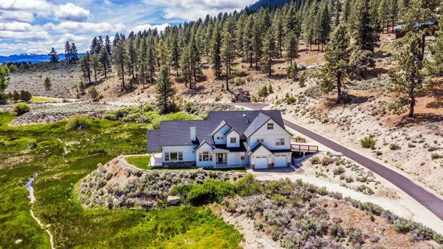 542 Jackson Ranch Road, Gardnerville, NV 89460 (MLS #190007466) :: Theresa Nelson Real Estate