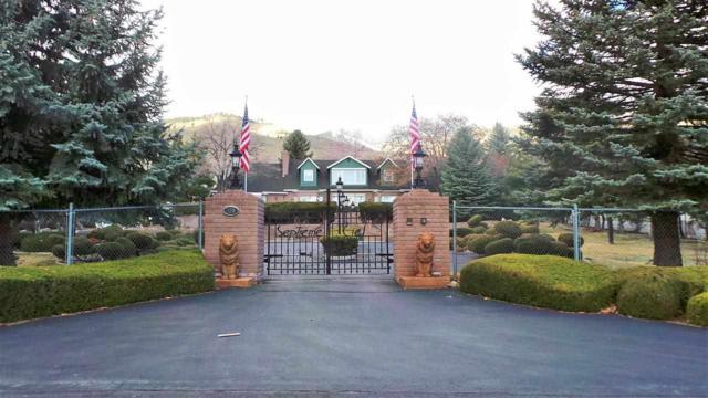180 Cogorno Way, Carson City, NV 89703 (MLS #190007469) :: Northern Nevada Real Estate Group