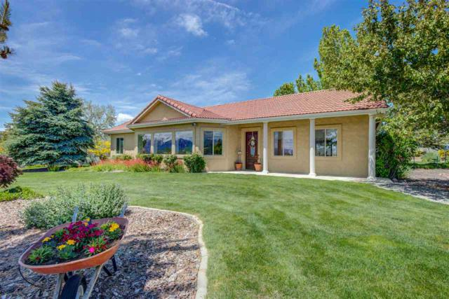 1662 Buckeye Rd, Minden, NV 89423 (MLS #190007492) :: Theresa Nelson Real Estate