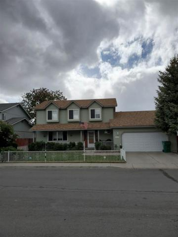 3110 Oreana Drive, Carson City, NV 89701 (MLS #190007494) :: Vaulet Group Real Estate