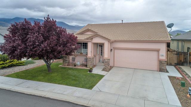 389 Royal Troon Drive, Dayton, NV 89403 (MLS #190007574) :: Vaulet Group Real Estate