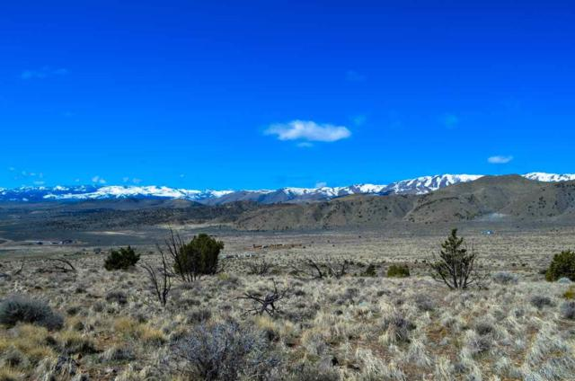 1355 Freds Mountain, Reno, NV 89508 (MLS #190007577) :: Northern Nevada Real Estate Group