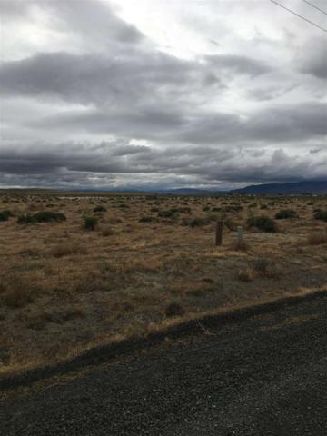 1395 Holly Ave, Silver Springs, NV 89429 (MLS #190007578) :: NVGemme Real Estate