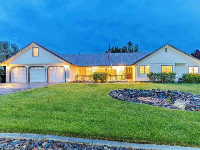 10005 Dixon Lane, Reno, NV 89511 (MLS #190007667) :: Chase International Real Estate