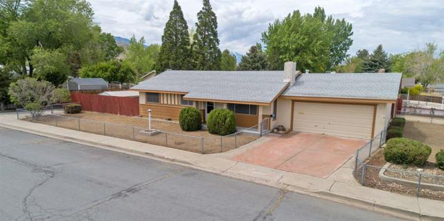 916 Kingsley Ln, Carson City, NV 89701 (MLS #190007668) :: Vaulet Group Real Estate