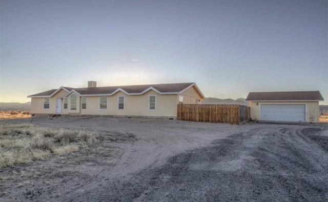 5655 Juniper Street, Silver Springs, NV 89429 (MLS #190007680) :: Northern Nevada Real Estate Group