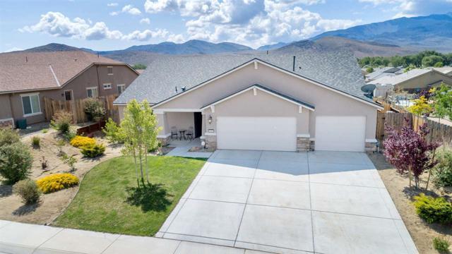 1113 Ferretto Pkwy, Dayton, NV 89403 (MLS #190007687) :: Northern Nevada Real Estate Group