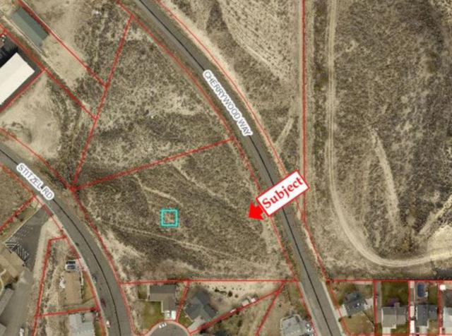 Stitzel Rd, Elko, NV 89801 (MLS #190007704) :: Northern Nevada Real Estate Group