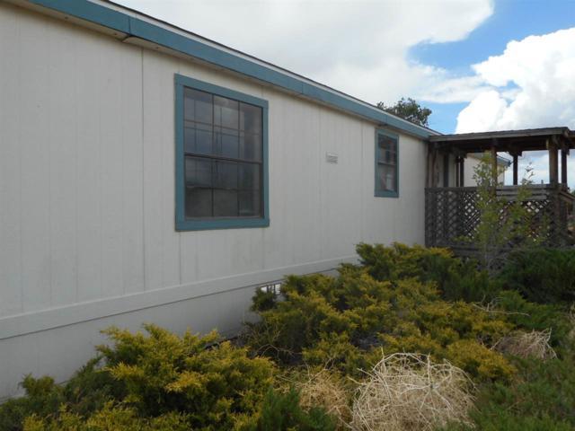 206 V & T Way, Dayton, NV 89403 (MLS #190007711) :: Northern Nevada Real Estate Group