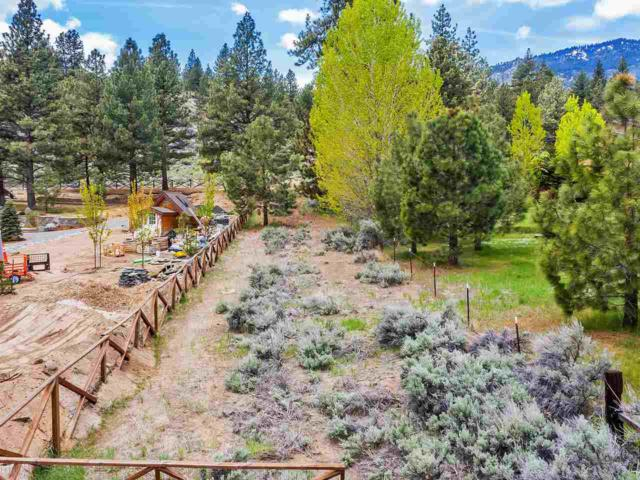 5010 Old Clear Creek Road, Carson City, NV 89705 (MLS #190007721) :: Chase International Real Estate