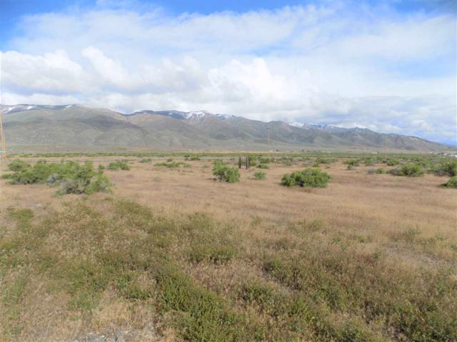 11405 Stampede Trail, Lovelock, NV 89419 (MLS #190008016) :: NVGemme Real Estate