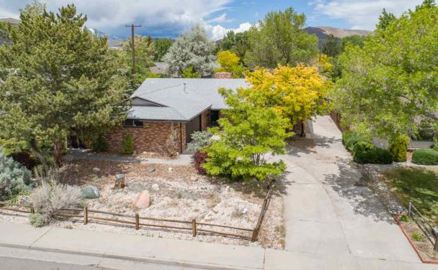 912 W Winnie, Carson City, NV 89703 (MLS #190008025) :: Ferrari-Lund Real Estate