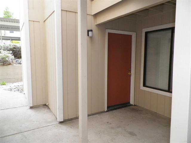 3890 E Leonesio A1, Reno, NV 89512 (MLS #190008070) :: NVGemme Real Estate