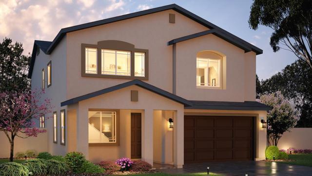 237 Willows Quest Drive, Verdi, NV 89439 (MLS #190008084) :: Vaulet Group Real Estate
