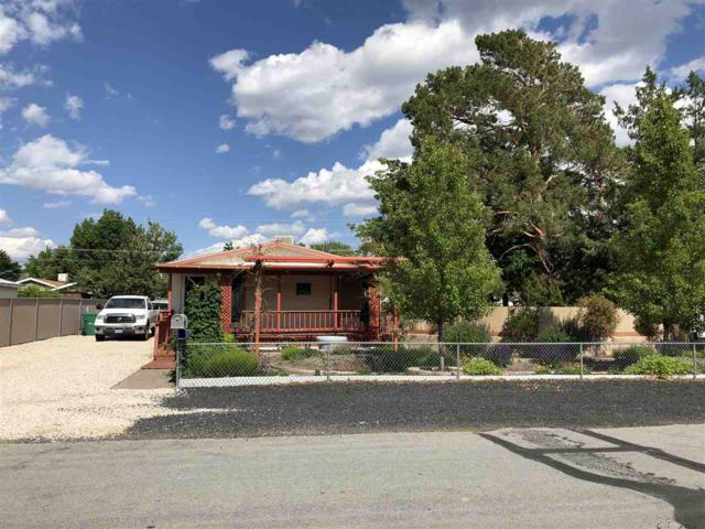 2759 Mayflower Way, Carson City, NV 89706 (MLS #190008183) :: Theresa Nelson Real Estate