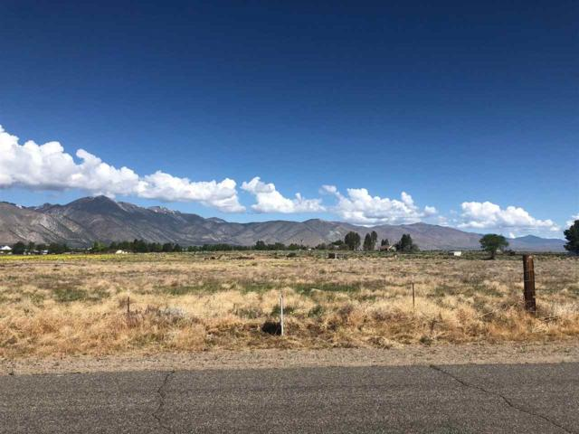 154 Artist View, Smith, NV 89430 (MLS #190008185) :: The Mike Wood Team