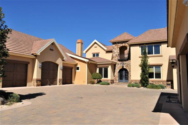 11215 Boulder Heights Court, Reno, NV 89511 (MLS #190008219) :: The Mike Wood Team