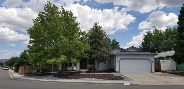 178 River Village Circle, Dayton, NV 89403 (MLS #190008225) :: Vaulet Group Real Estate