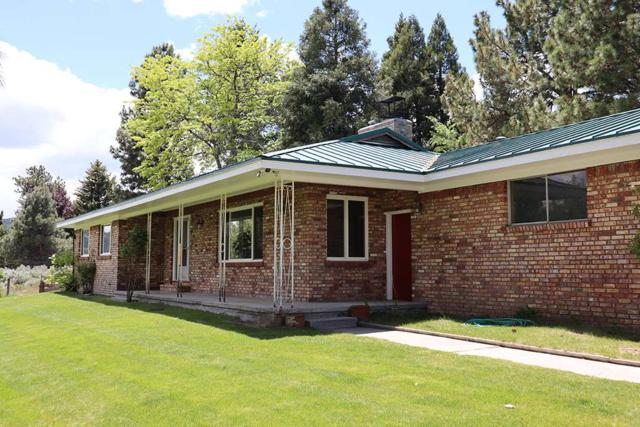 75 Lonesome Polecat Lane, Washoe Valley, NV 89704 (MLS #190008242) :: Marshall Realty