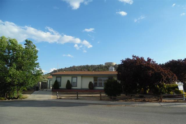 293 Miriam Way, Moundhouse, NV 89706 (MLS #190008278) :: Northern Nevada Real Estate Group