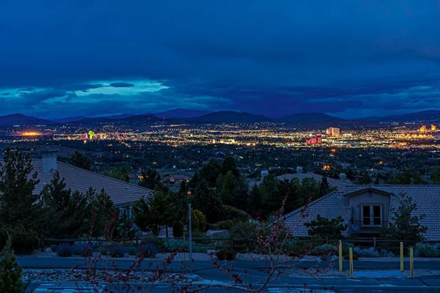 3379 Forest View Lane, Reno, NV 89511 (MLS #190008359) :: Theresa Nelson Real Estate
