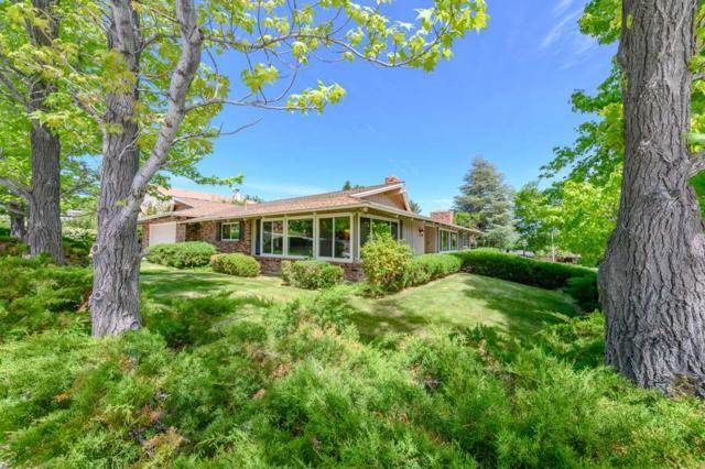 3435 San Juan Drive, Reno, NV 89509 (MLS #190008446) :: Theresa Nelson Real Estate