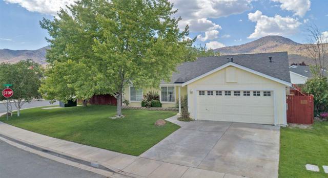 300 Monte Cristo, Dayton, NV 89403 (MLS #190008461) :: Ferrari-Lund Real Estate