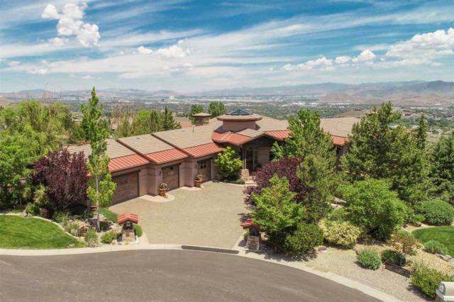 3464 Arivaca Court, Reno, NV 89521 (MLS #190008503) :: Theresa Nelson Real Estate