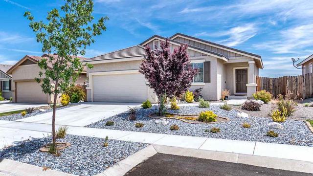 112 Catlin St, Dayton, NV 89403 (MLS #190008516) :: Vaulet Group Real Estate