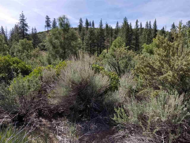 Parcel 19 Woodfords Lane, Woodfords, Ca, CA 96120 (MLS #190008593) :: NVGemme Real Estate
