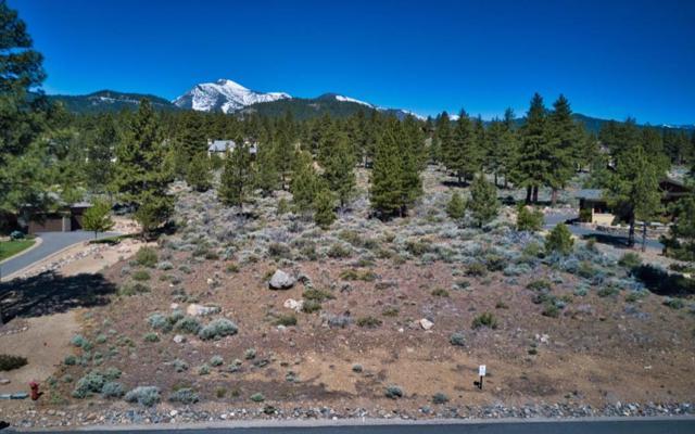 665 Sand Cherry Ct, Reno, NV 89511 (MLS #190008606) :: Joshua Fink Group