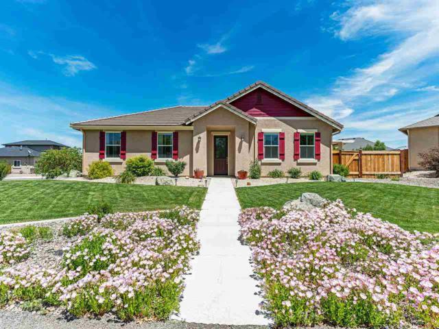 1105 Belsera, Minden, NV 89423 (MLS #190008665) :: Vaulet Group Real Estate