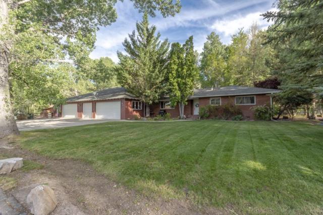 198 Concho Drive, Reno, NV 89521 (MLS #190008675) :: Ferrari-Lund Real Estate