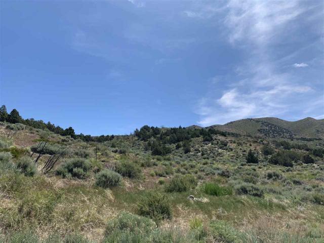 1289 Deerlodge, Reno, NV 89508 (MLS #190008681) :: Ferrari-Lund Real Estate