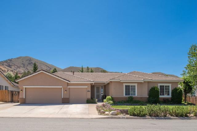5880 Lone Horse Dr., Reno, NV 89502 (MLS #190008769) :: The Mike Wood Team