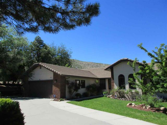 3834 Westwood Drive, Carson City, NV 89703 (MLS #190008824) :: NVGemme Real Estate