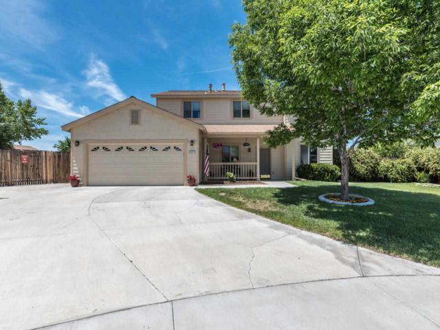 807 River Knolls Court, Dayton, NV 89403 (MLS #190008844) :: Vaulet Group Real Estate