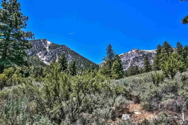 475 Nature's Edge, Gardnerville, NV 89460 (MLS #190008907) :: Marshall Realty