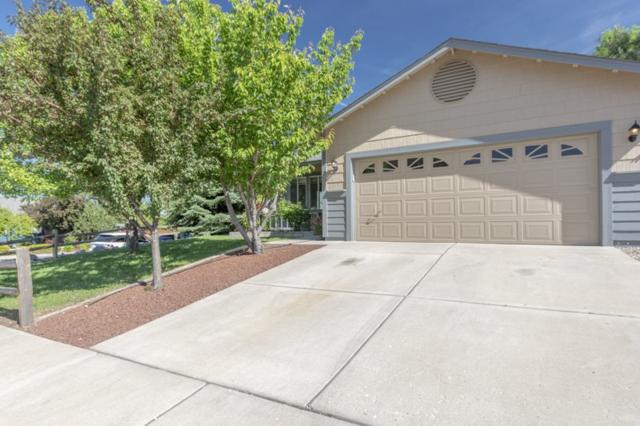 7200 Ishi Point Court, Reno, NV 89523 (MLS #190008994) :: Theresa Nelson Real Estate