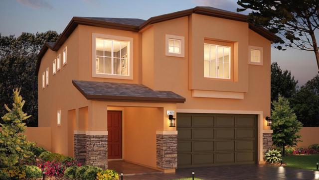 115 Balcorta Ct, Verdi, NV 89439 (MLS #190009043) :: Vaulet Group Real Estate