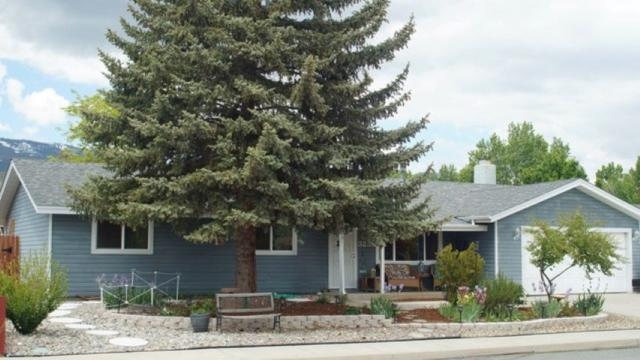3254 Cortez Street, Carson City, NV 89701 (MLS #190009082) :: Vaulet Group Real Estate