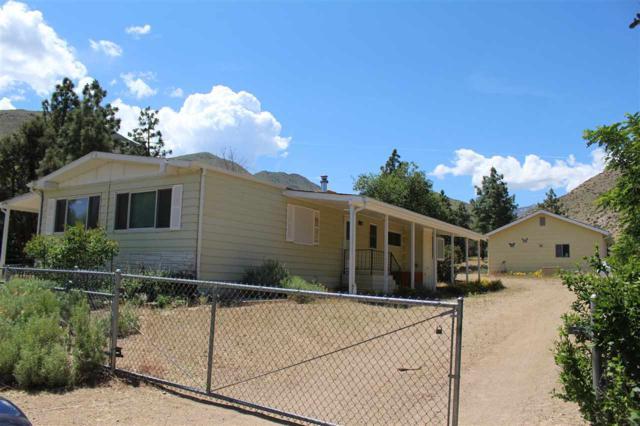 119 Shetler Drive, Coleville, Ca, CA 96107 (MLS #190009105) :: Chase International Real Estate