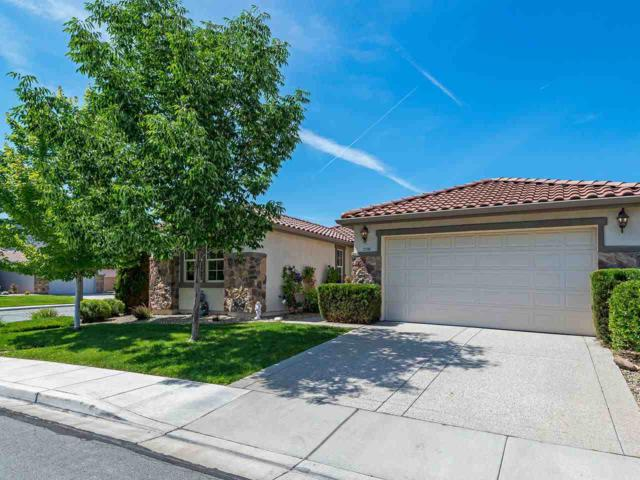 2598 Spring Flower Drive, Reno, NV 89521 (MLS #190009136) :: Theresa Nelson Real Estate