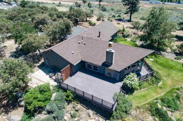 800 Buckbrush Drive, Reno, NV 89439 (MLS #190009188) :: Northern Nevada Real Estate Group